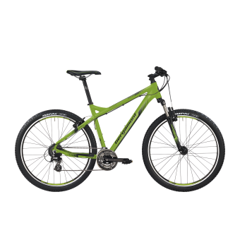 Bergamont Roxtar 2.0 Mountainbike