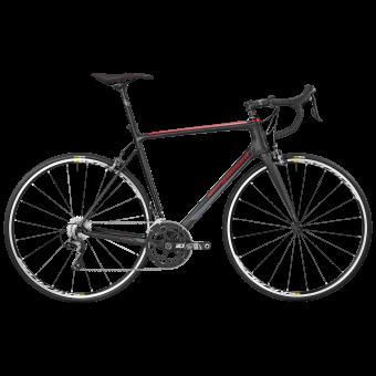 Bergamont BGM Bike Prime Race Rennrad