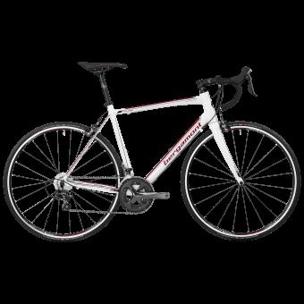 Bergamont BGM Bike Prime 6.0 Rennrad