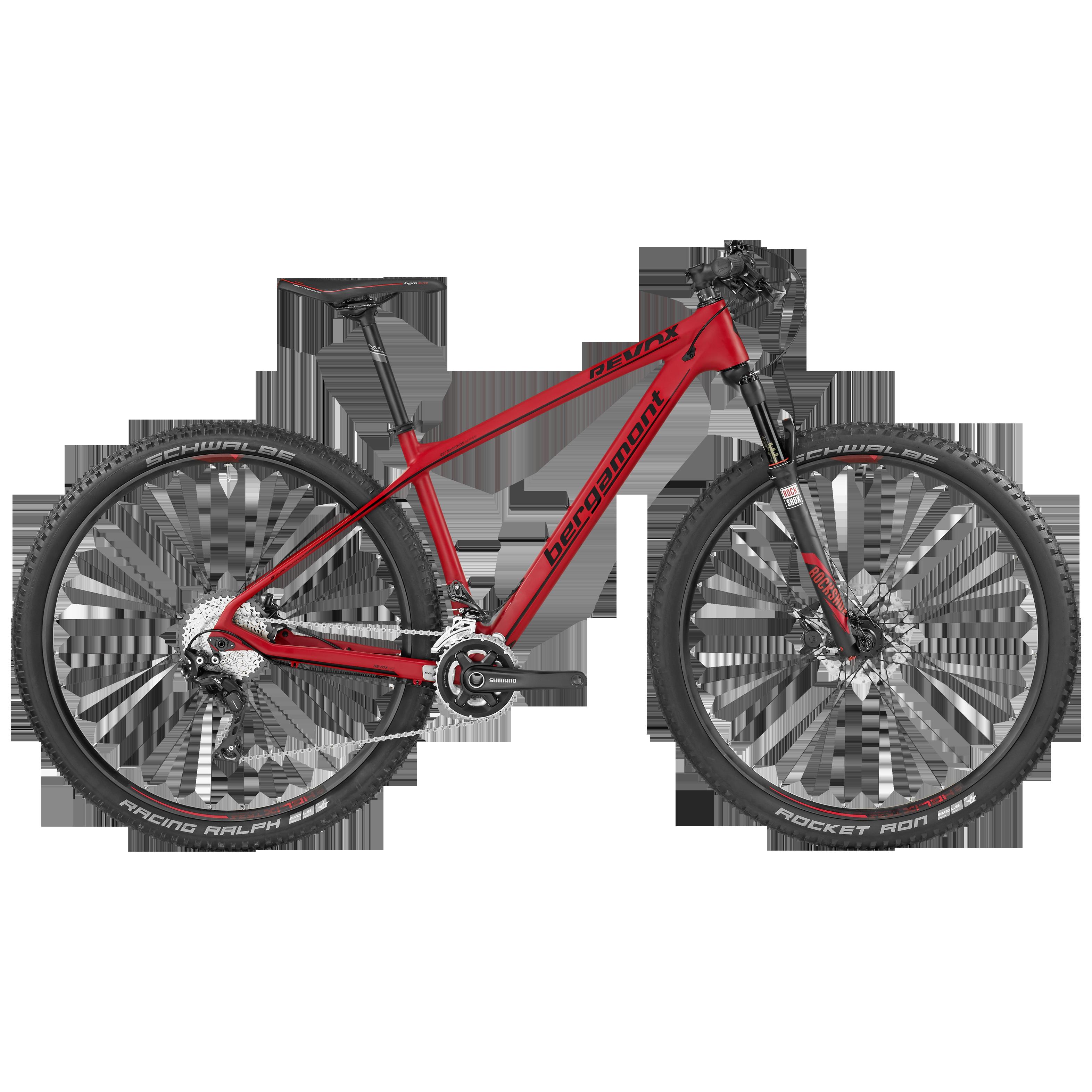 BGM Bike Revox 9.0 Mountainbike