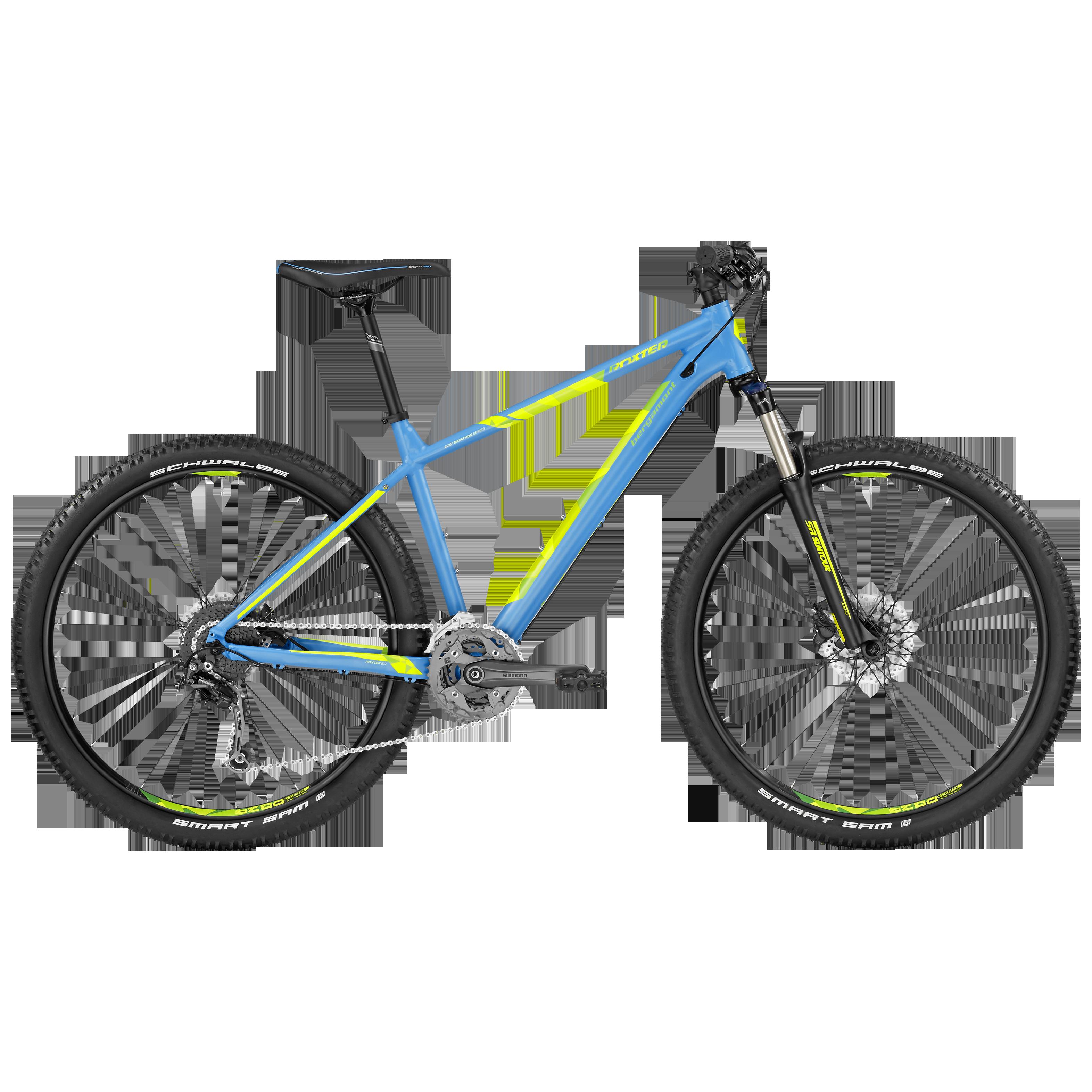 BGM Bike Roxter 5.0 Mountainbike