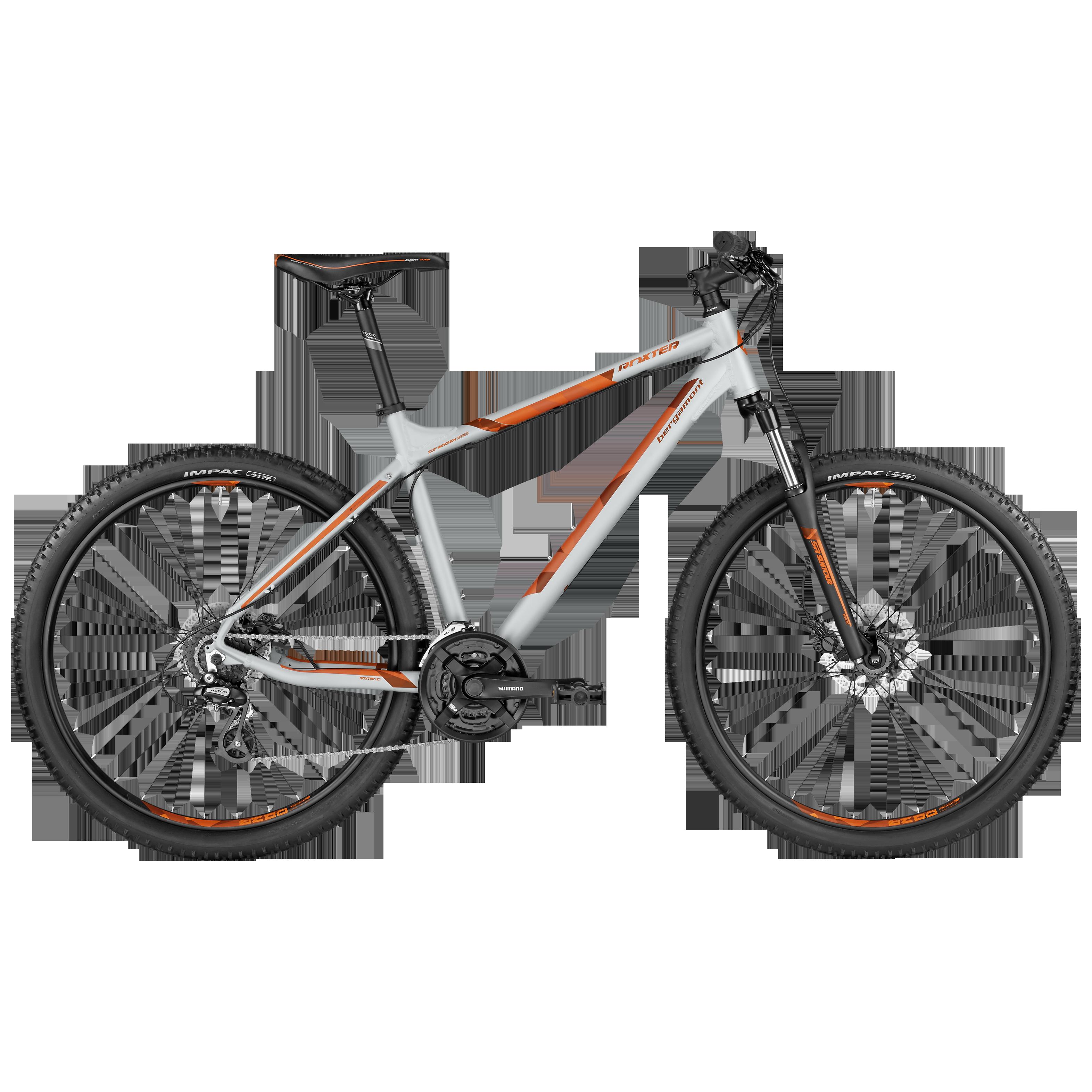 Roxter 3.0 light grey/orange Mountainbike